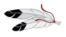 feather-image